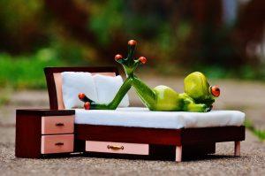 Frosch auf Bett